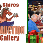 Shires Auction December slider