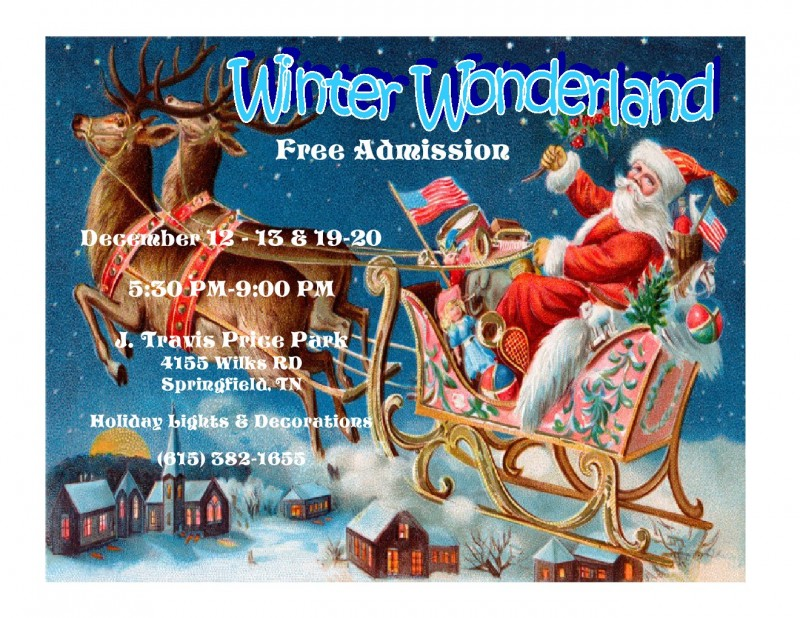 winter wonderland 2014 design