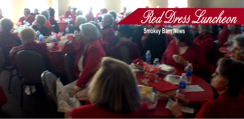 Red dress luncheon slider 2015